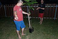 2015-07-21_drevcice_p1040511.jpg: 120k (2015-07-21 21:34)