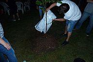 2015-07-21_drevcice_p1040529.jpg: 104k (2015-07-21 22:00)