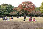 japan2012_brano_img_4494.jpg: 173k (2012-11-04 17:43)