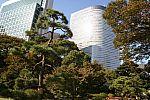 japan2012_brano_img_4594.jpg: 224k (2012-11-04 17:43)
