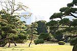 japan2012_brano_img_4596.jpg: 171k (2012-11-04 17:43)