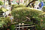 japan2012_brano_img_4665.jpg: 214k (2012-11-04 17:43)