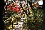 japan2012_brano_img_4674.jpg: 258k (2012-11-04 17:43)