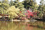 japan2012_brano_img_4779.jpg: 206k (2012-11-04 17:43)