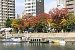 japan2012_brano_img_4856.jpg: 195k (2012-11-04 17:43)