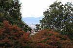 japan2012_brano_img_4973.jpg: 182k (2012-11-04 17:43)