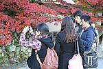 japan2012_brano_img_5061.jpg: 133k (2012-11-04 17:43)