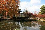 japan2012_brano_img_5076.jpg: 182k (2012-11-04 17:43)