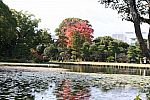 japan2012_brano_img_5078.jpg: 153k (2012-11-04 17:43)