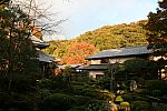 japan2012_brano_img_5104.jpg: 174k (2012-11-04 17:43)