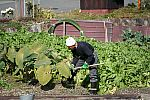 japan2012_brano_img_5153.jpg: 186k (2012-11-04 17:43)