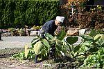 japan2012_brano_img_5156.jpg: 191k (2012-11-04 17:43)
