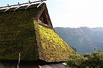 japan2012_brano_img_5184.jpg: 137k (2012-11-04 17:43)