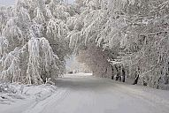 _tokyo_winter.jpg: 173k (2013-01-07 10:45)