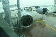japan2012_slavo_20121103_p101063606.jpg: 118k (2012-11-03 14:01)