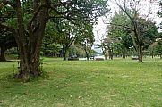 japan2012_slavo_20121105_p101065320.jpg: 217k (2012-11-05 12:15)