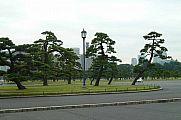 japan2012_slavo_20121105_p101065421.jpg: 120k (2012-11-05 12:18)