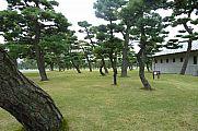 japan2012_slavo_20121105_p101065724.jpg: 192k (2012-11-05 12:20)