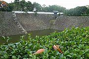 japan2012_slavo_20121105_p101066532.jpg: 192k (2012-11-05 12:58)