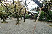 japan2012_slavo_20121105_p101068147.jpg: 251k (2012-11-05 13:51)