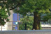 japan2012_slavo_20121105_p101069157.jpg: 137k (2012-11-05 15:19)