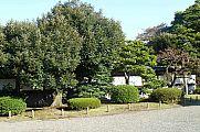japan2012_slavo_20121107_p1010812143.jpg: 301k (2012-11-07 14:36)