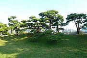 japan2012_slavo_20121107_p1010844175.jpg: 163k (2012-11-07 15:14)