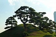 japan2012_slavo_20121107_p1010849180.jpg: 130k (2012-11-07 15:19)