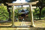 japan2012_slavo_20121107_p1010851182.jpg: 269k (2012-11-07 15:36)