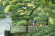 japan2012_slavo_20121107_p1010856187.jpg: 224k (2012-11-07 15:41)