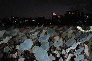 japan2012_slavo_20121107_p1010869198.jpg: 116k (2012-11-07 18:10)