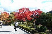 japan2012_slavo_20121108_p1010909236.jpg: 219k (2012-11-08 14:11)
