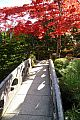 japan2012_slavo_20121108_p1010916243.jpg: 240k (2012-11-08 14:15)