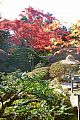 japan2012_slavo_20121108_p1010921248.jpg: 271k (2012-11-08 14:19)