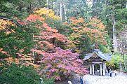 japan2012_slavo_20121108_p1010967290.jpg: 257k (2012-11-08 15:50)