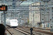 japan2012_slavo_20121109_p1010991311.jpg: 195k (2012-11-09 11:53)