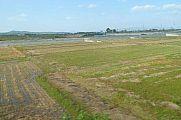 japan2012_slavo_20121112_p1020038344.jpg: 119k (2012-11-12 11:59)