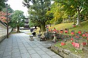 japan2012_slavo_20121112_p1020046350.jpg: 227k (2012-11-12 12:50)