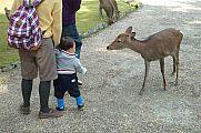 japan2012_slavo_20121112_p1020058362.jpg: 248k (2012-11-12 13:03)