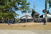 japan2012_slavo_20121112_p1020064367.jpg: 208k (2012-11-12 13:24)