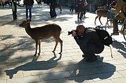 japan2012_slavo_20121112_p1020068371.jpg: 155k (2012-11-12 13:45)