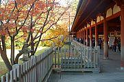japan2012_slavo_20121112_p1020084387.jpg: 188k (2012-11-12 14:07)