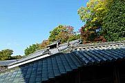 japan2012_slavo_20121112_p1020114416.jpg: 177k (2012-11-12 15:10)