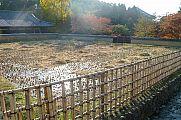 japan2012_slavo_20121112_p1020118420.jpg: 230k (2012-11-12 15:21)