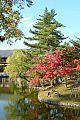 japan2012_slavo_20121112_p1020120422.jpg: 235k (2012-11-12 15:30)