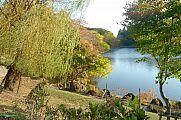 japan2012_slavo_20121112_p1020125427.jpg: 259k (2012-11-12 16:23)