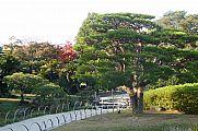 japan2012_slavo_20121114_p1020265545.jpg: 208k (2012-11-14 15:49)