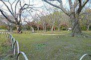 japan2012_slavo_20121114_p1020268548.jpg: 248k (2012-11-14 15:54)