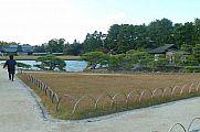 japan2012_slavo_20121114_p1020277557.jpg: 144k (2012-11-14 16:07)