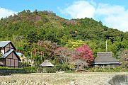 japan2012_slavo_20121116_p1020305579.jpg: 234k (2012-11-16 12:42)